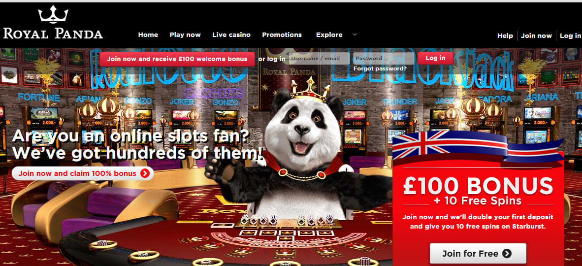Spielen sie Forest of Wonders Automatenspiele Online bei Casino.com Österreich