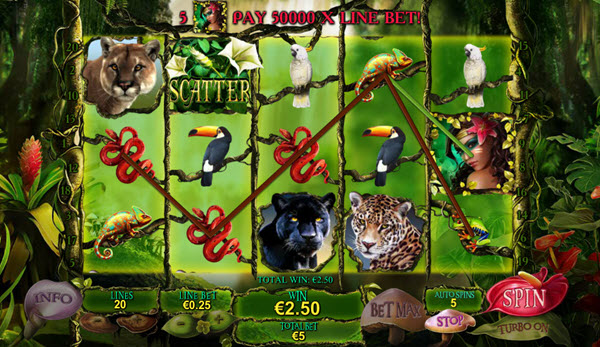 wild symbol of secrets of the amazon slot game
