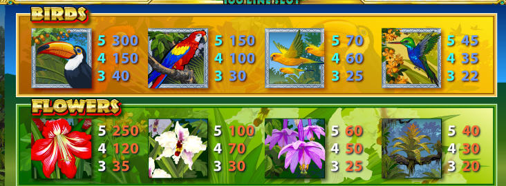Amazon Wild slot symbols