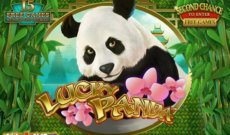 Lucky Panda slot game
