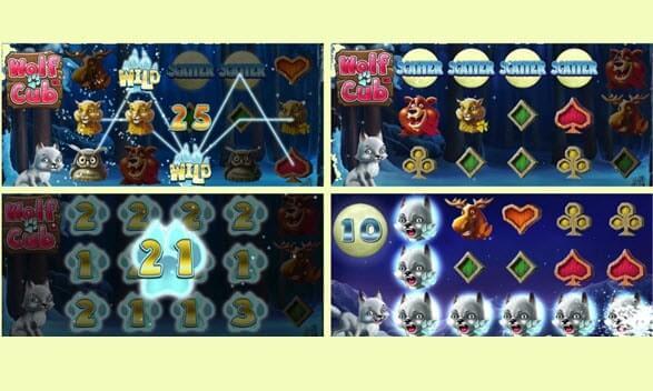 Symbols of Wolf Cub slot game